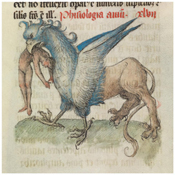 Medieval Bestiaries and Their Original Purpose (a Book of Beasts: The Bestiary in the Medieval World event))