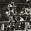 Larry Fink: The Boxing Photographs